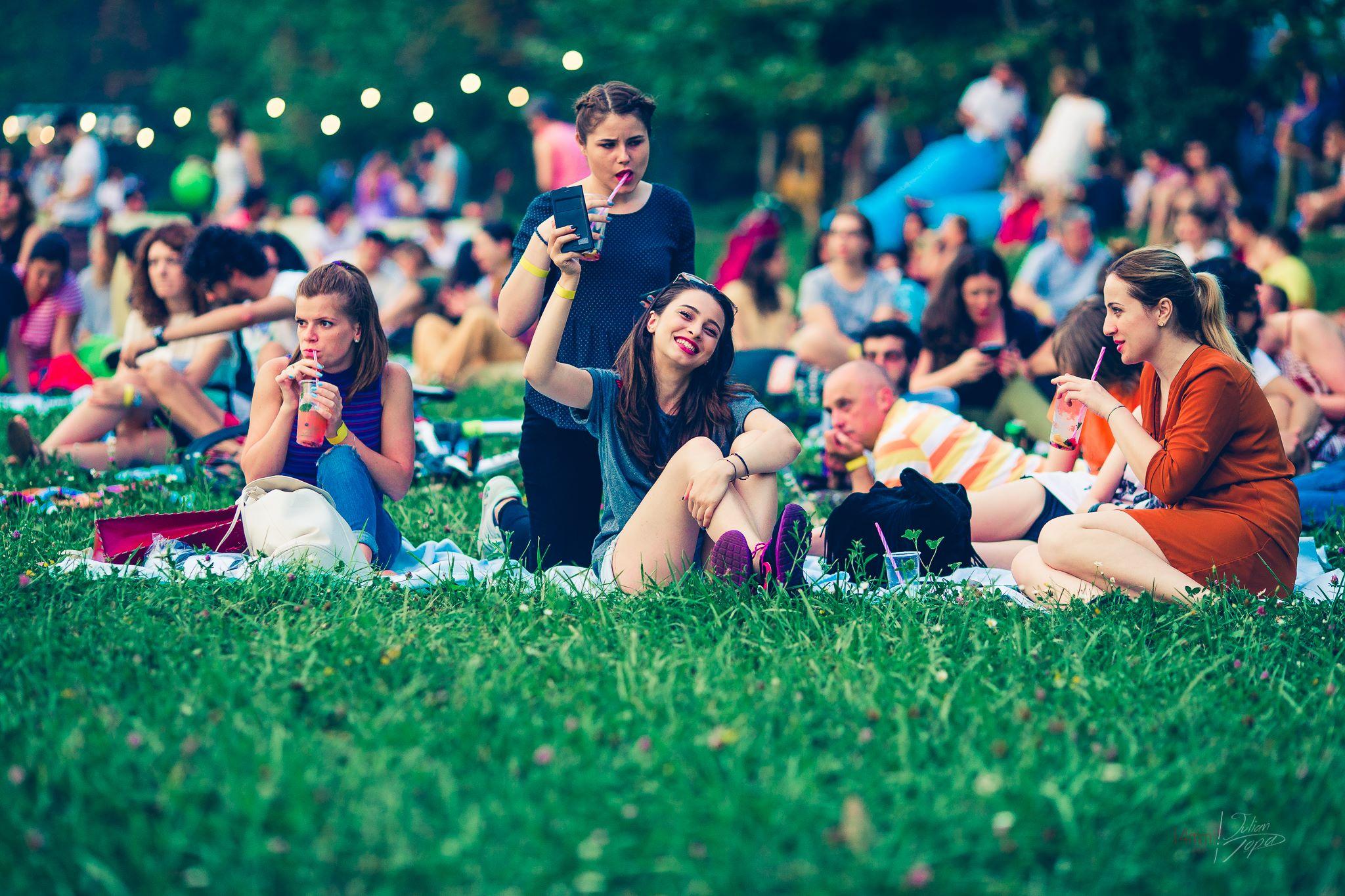 picnic vibe 7