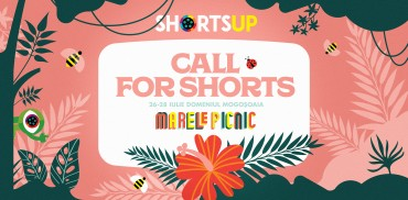 ShortsUP Audience Award Regulations