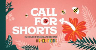 Call for Short: The Great Picnic, 6th edition